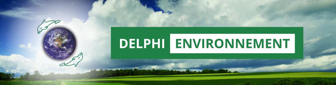 Delphi Environnement